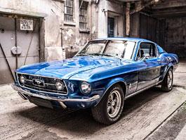 Karbon, nubuk a hladk� k�e pro klasick� Ford Mustang