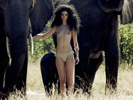 Kalendář Pirelli pro rok 2009: spojení krásy a africké přírody: titulní fotka