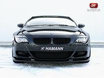 Hamann M6