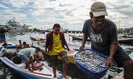 Investice do rybolovu by v Africe vytvo�ily a� 300 tis�c pracovn�ch m�st