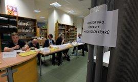 Jana Havligerov�: Jedna dlouh� kampa� a hra na jistotu