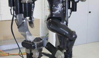 Roboti člověku budou pomáhat ivsexu