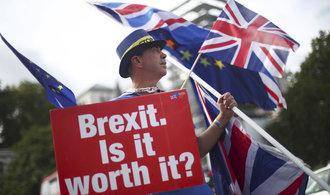 Británie by měla uspořádat další referendum o brexitu, řekl Babiš pro BBC