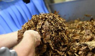 Philip Morris navýšil v Česku zisk i tržby, prosadily se cigarety bez kouře