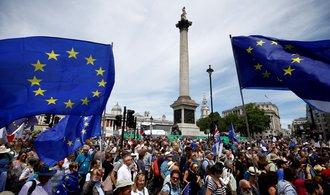 Část Britů se nechce smířit s odchodem z Evropské unie