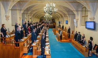 Senátoři ČSSD chtějí, aby strana zůstala v opozici