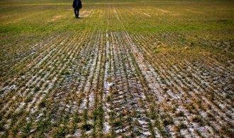 O zemědělskou půdu je velký zájem, ceny loni stouply o čtvrtinu