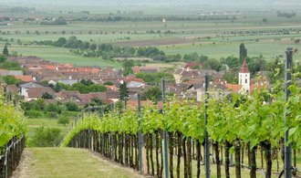 Vinařství Kolby opět mění majitele, cena transakce dosahuje desítek milionů