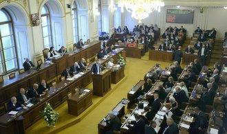 Glosa Jany Havligerové: Kolik má brát politik