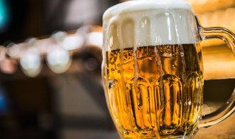 Pivovary vyrobily nejvíce piva v historii, v Česku se pije stále víc