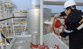 Moskva op�t zah�j� privatizaci ropn� firmy Ba�n�f�, do sout�e pust� i st�tn� Rosn�f�
