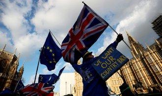 Proces brexitu by se měl prodloužit, apelují britští poslanci