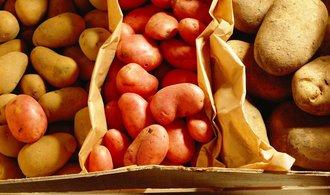 Nejdražší brambory za pět let. Cenu nestlačily ani levné dovozy