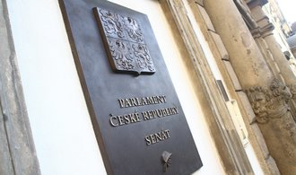 ODS a Starostové srovnali v Senátu síly