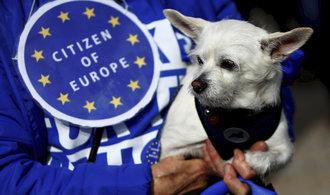Komentář Martina Lobotky: Referendum o kvadratuře kruhu