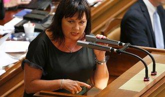 Vláda nesouhlasí s novými zdroji příjmů rozpočtu Evropské unie, uvedla Schillerová