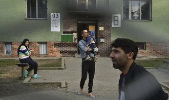 Zařízení pro migranty v Česku zejí prázdnotou, jejich vytíženost je v řádu procent