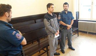 Muž, který vyhrožoval bombovými útoky RegioJetu i Leo Expressu, dostal osm let vězení