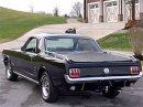 Už jste slyšeli o Fordu Mustero? Mustang s korbou skutečně existoval, vzniklo asi 50 exemplářů