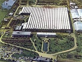 Fiat: znovuotevření továrny v Argentině
