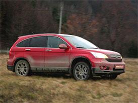 Český trh v roce 2011: Modely podle podílu 4x4