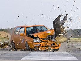 Co čekat od srážky auta s divočákem při 80 km/h?