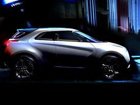 Hyundai Curb: Crossover pro Detroit