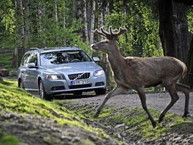 Volvo a zvířata: V budoucnu bez kolizí