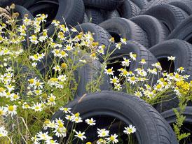 Poslanci navrhují zákaz letních pneumatik