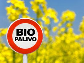 Biopaliva motorům neškodí, přesvědčuje ADAC