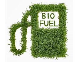 Biopaliva motorům škodí, tvrdí v USA