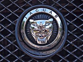 Jaguar nabírá 1.100 zaměstnanců