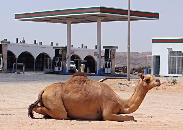 Reportáž: V Ománu se jezdí jako v ráji