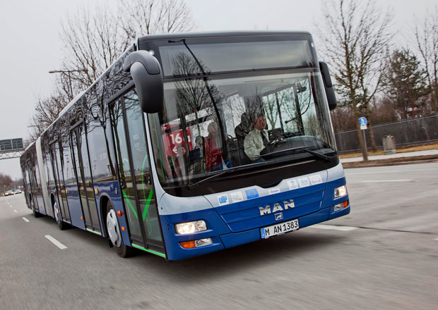 M�stsk� autobusy: Se lvem ve znaku