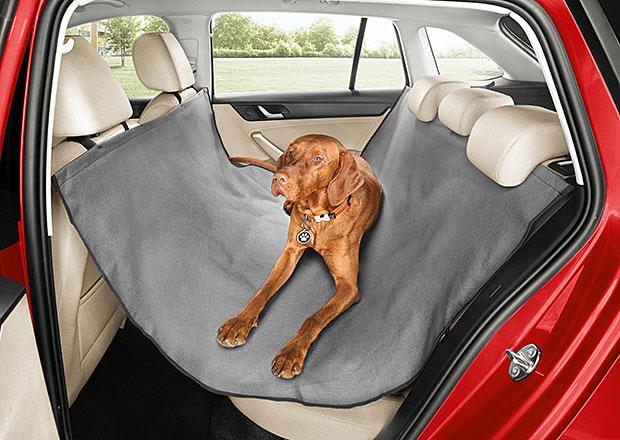 Pes v autě: Jak přepravovat čtyřnohé miláčky