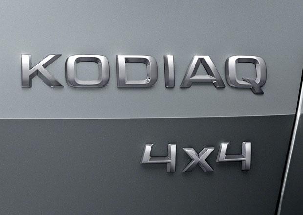 Škoda Kodiaq: Proč se tak jmenuje? Medvěd Kodiak je prý rodinný typ...