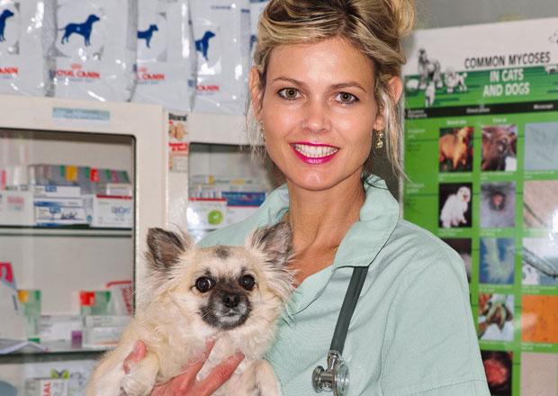 Jak vozit domácí zvířata: Jezdíte pouze k veterináři? Pes to pozná a nechce!