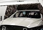 Video: Ford leští auta gigantickou prachovkou z pštrosího peří