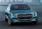 Audi h-tron quattro: O kousek blíže ke Q6?