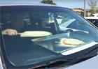 Video: Tip na víkendové tropy. Upečte si v rozpáleném autě pizzu!