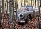 Aston Martin DB4 stál přes 40 let v lese. Nyní je na prodej za nehoráznou sumu