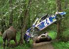 Podívejte se na hřbitov závodních aut, s nimiž závodil i Dale Earnhardt Jr.