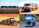 Nejdelší náklaďáky: Prohlédněte si úžasné silniční vlaky minulosti i současnosti