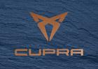 Nová značka VW Group se představuje. Cupra jako první nabídne rychlé SUV