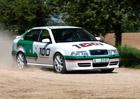 Ojetá Škoda Octavia RS 1. generace: Ojetina, nebo už youngtimer?
